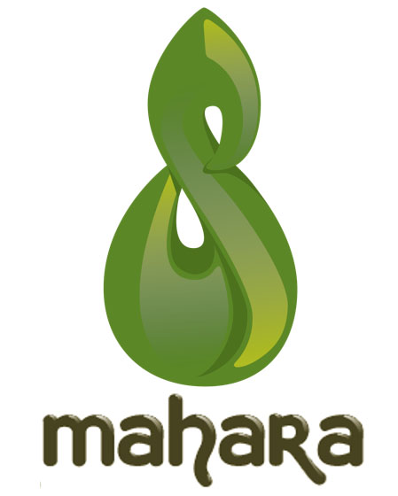 How To install Mahara on Ubuntu 16.04