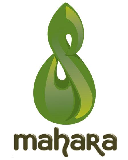Install Mahara on Ubuntu 20.04