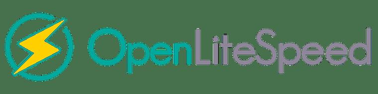 Install OpenLiteSpeed on Ubuntu 20.04