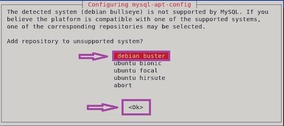 Install MySQL on Debian 11 Bullseye
