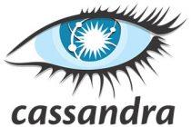 Install Apache Cassandra on Ubuntu 14.04
