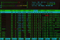 htop-process-monitoring-tool